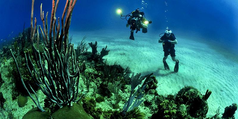 So nutzen Sie eine Unterwasserkamera