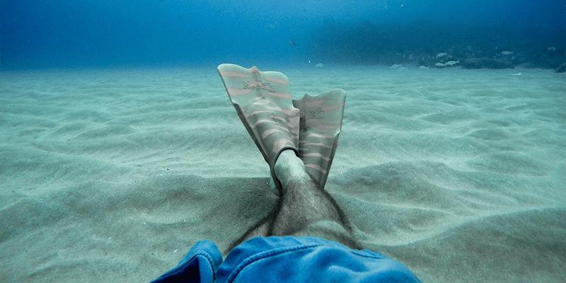 Schwimmflossen Test und Vergleich